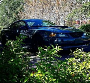 OBO 2003 Ford Mustang Base Coupe (2 door)