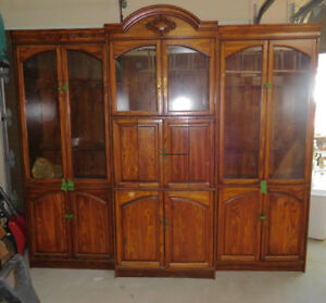 Wall unit with in-cabinet lighting