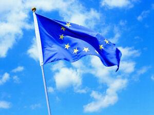3x5'European Union EU Euro Flag 90*150cm Europe emblem Council Europe CoE banner