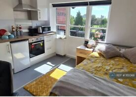 Studio flat in Regent Road, Leicester, LE1 (#1151368)