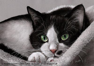 Original Kohle Zeichnung Tuxedo Katze charcoal drawing CAT von A.C. Griehl-Gross