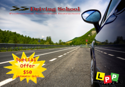 Professioinal Driving Instructors