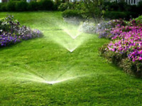 Green Queen sod and irrigation systems lawnscaping