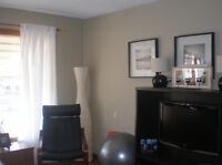 Quite Two bedrooms near U of A, Whyte Ave and Down Town