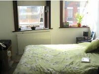 Cosy Double Room in a lovely flat share - London Bridge