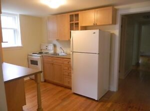 2 Bedroom Basement Unit Downtown (Heat & Water Included)