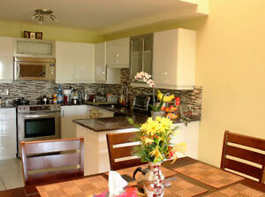 Sunny & Spacious 3 bdr Condo for rent Nov-March, fully furnished