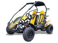 Quadzilla Wolf XL Junior off-road kids / teen buggy