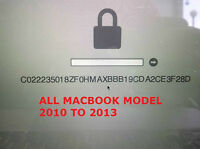 MACBOOK PRO EFI Password Removal IN 30 MINUTES*******