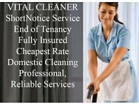 END OF TENANCY CLEANING/DOMESTIC CLEANING/CARPET CLEANING/OVEN/DOMESTIC/AFTER BUILDERS