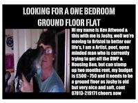 One bedroom ground floor flat needed