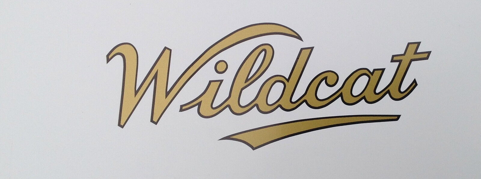 Wildcat Scooters Ltd