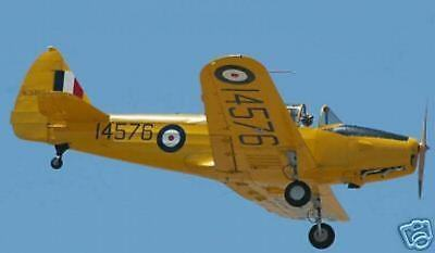 Fairchild PT-19A M-62A  Airplane Wood Model Free Shipping for sale  Shipping to Canada