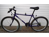 Men's TREK Sport 800 Mountain/Road Bike with Lock