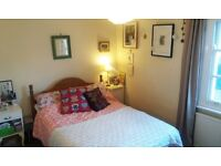 Lovely double room to rent for professional, central St Clements, £485 p.m. incl bills avail March