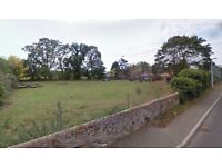 Grazing land to rent £100pcm