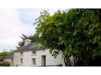 Lovely traditional 2 bed cottage for rent.