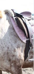 16 in A/P english saddle /selle anglaise A/P 16 po