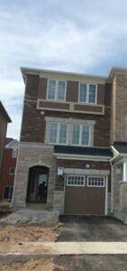New House for Rent at the Entrance of Mount Pleasant Go Brampton