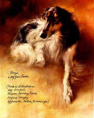 Borzoi - Vintage Dog Art Print - Poortvliet