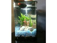 BiOrb Flow Fishtank & Accessories ** OR swap for another fishtank**