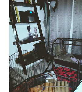 Wonderful Guinea Pig Cage---Great Condition, Clean 80 OBO