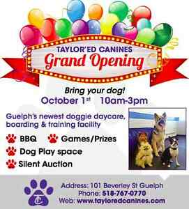 Bring your dog- GRAND OPENING, TAYLOR'ED CANINES