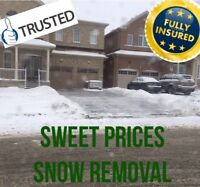 Snow removal $40/very reliable/seniors discounts