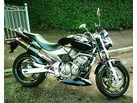 Honda Hornet 600 Black