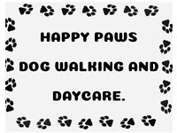 Happy paws experienced dog walking & daycare.