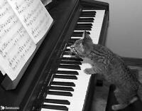 cours de piano villeray/rosemont/plateau