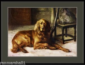 English Picture Print Pet Irish Setter Dog  Art