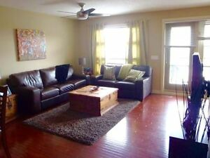 Bright and Modern Executive Townhouse in SW (Aspen) For Rent