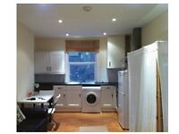Wimbledon bright Large Studio Flat opposite station and Centre Court shopping centre available now