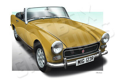 MG MIDGET AUSTIN HEALEY SPRITE PRINT - PERSONALISED ILLUSTRATION OF YOUR CAR