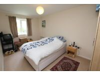 Newly Furbished To let 5 Bedroom House in E13