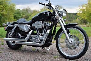 2004 Harley Davidson Sportster 1200 C