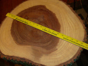 New hand made Live Edge Rustic Table London Ontario image 4