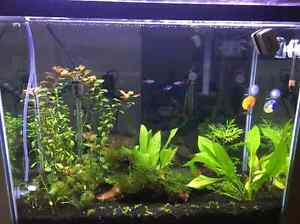 Aquarium Heaters, air pump and tank for sell (Burnaby)