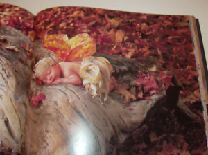 Anne Geddes Amazing Picture Book: A Labour of Love