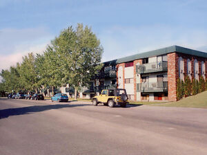 STUDENTS !   1&2 Bedroom Apartment - Central Avenue - Sutherland