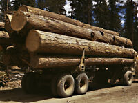 Log Truck Rig out