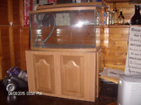 40 gallon bow front aquarium . wood stand with 5 door