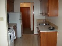 Bright one bedroom Apartment!!