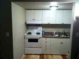 Bassment for rent