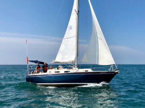 Northern 29 Sailboat with Custom Trailer