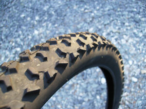 Winter mountain bike tires