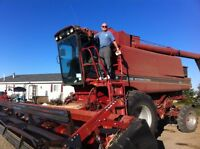 1680 Case Combine, in field ready condition price reduced