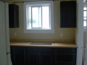 One Bedroom apartment Fort Erie