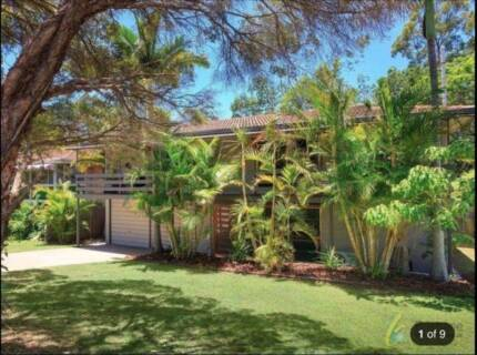 2 Rooms Available in Chapel Hill Sharehouse Brisbane Region Preview